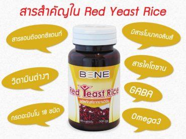 สารสำคัญใน Red Yeast Rice