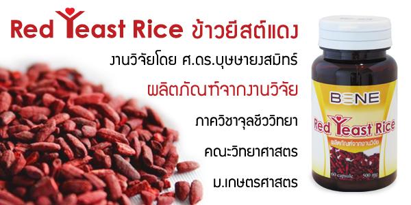 Red Yeast Rice คือ อะไร