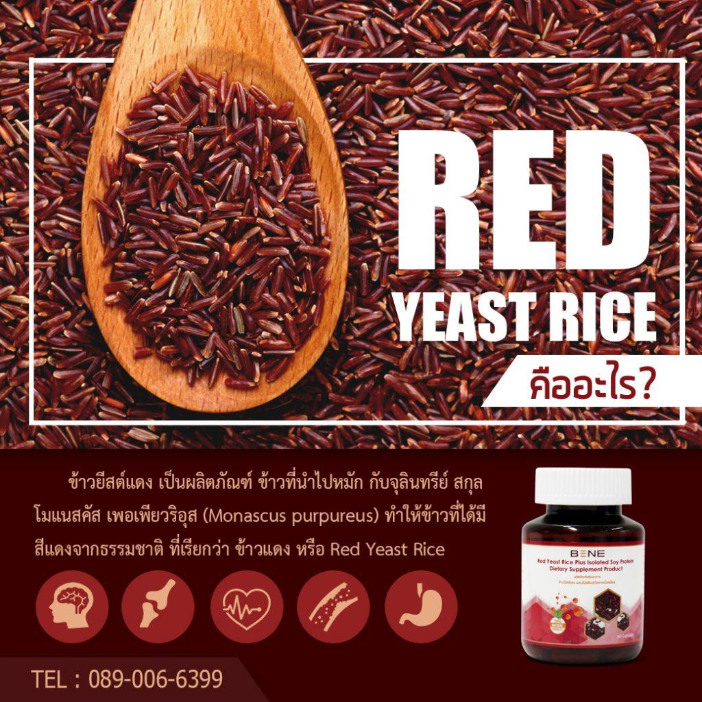 Red yeast rice คืออะไร